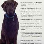 The Dog Commandments: